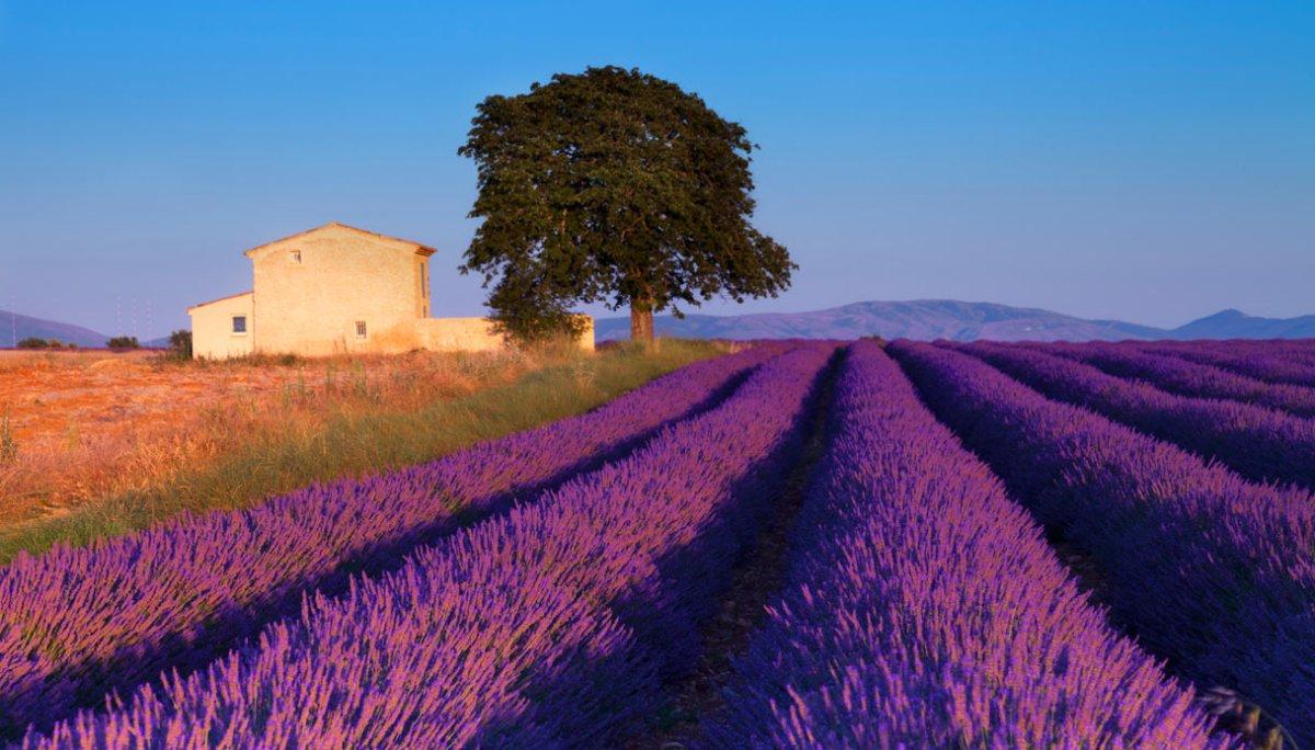 Itinerario di viaggio da Marsiglia in Provenza