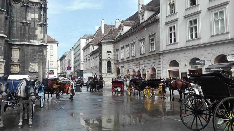 Cosa vedere a Vienna in due giorni