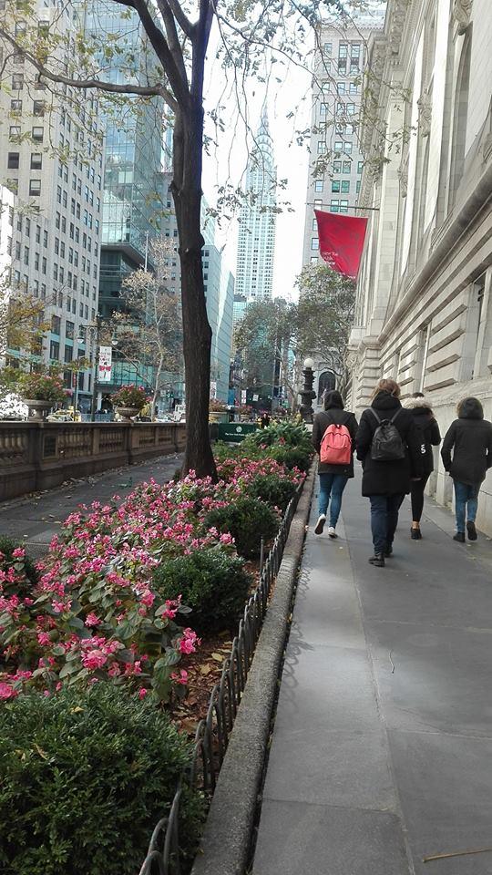 Organizzare viaggio a New York senza agenzia